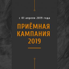 Приемная кампания 2019 года